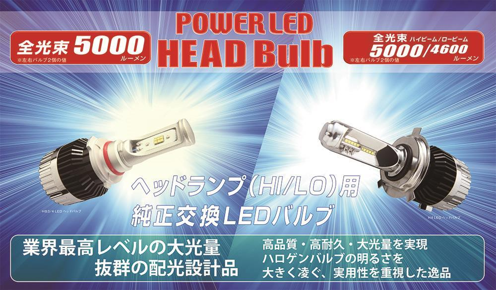 RG POWERLED HEADBulb