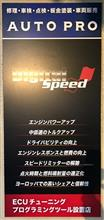 Digital Speed Stage 2 再インストール