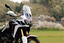 AfricaTwin & CherryBlossom