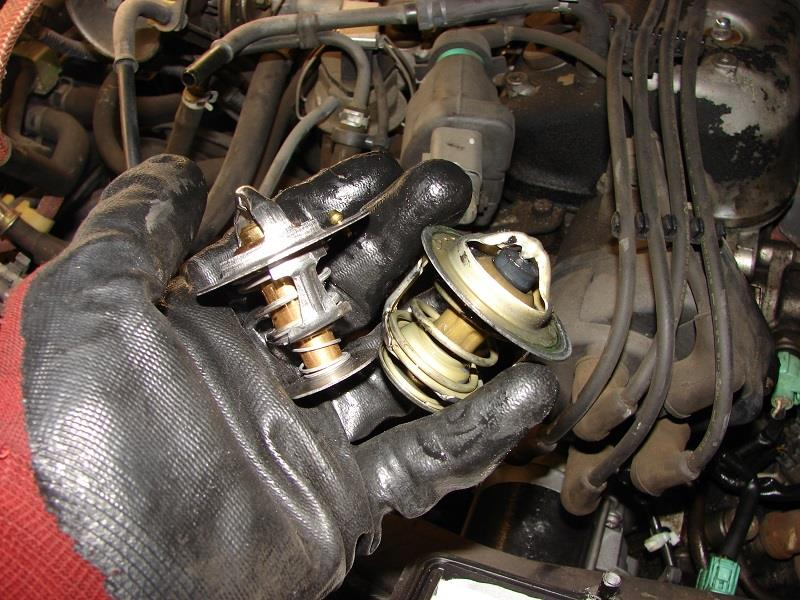 93 Accord 4 drs: Thermostat & gasket @171786