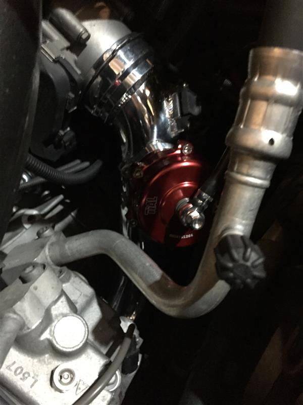 Tial Q 50MM RED BOV