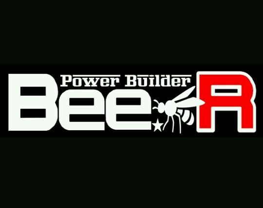 Bee☆R BR-ROM