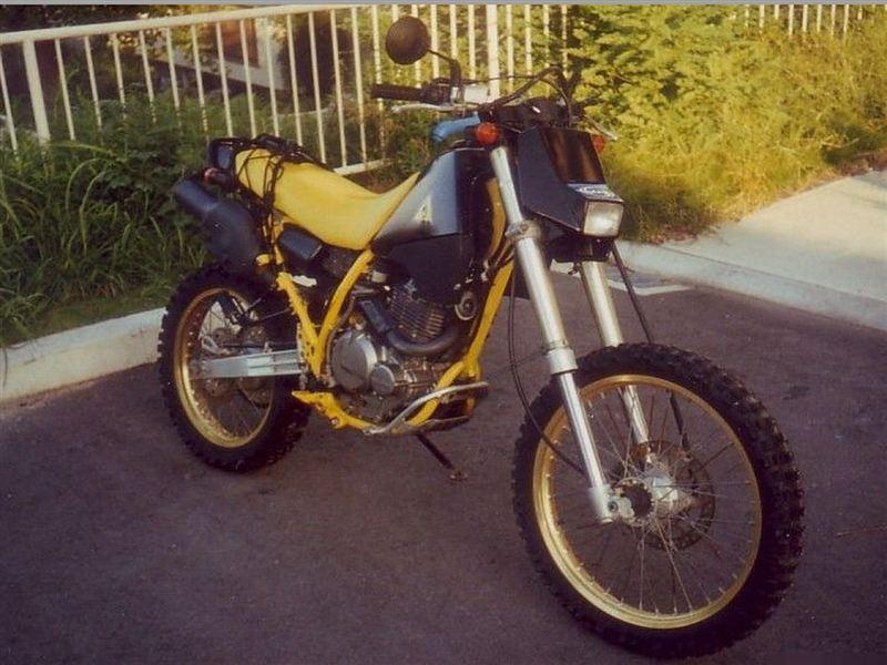 スズキ DR250S