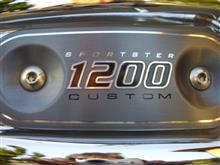 1100RSさんのXL1200C インテリア画像