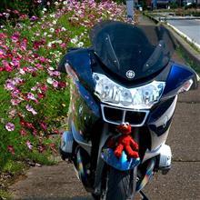 NoriBayさんのR1200RT メイン画像