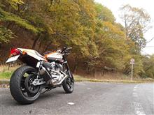アカ。さんのスポーツスターXR1200 リア画像