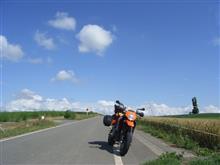 OrvalさんのKTM950スーパーモト メイン画像