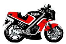 三九郎さんのKR250A 左サイド画像