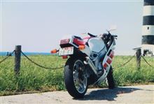 イカりんぐさんのFZR400R リア画像