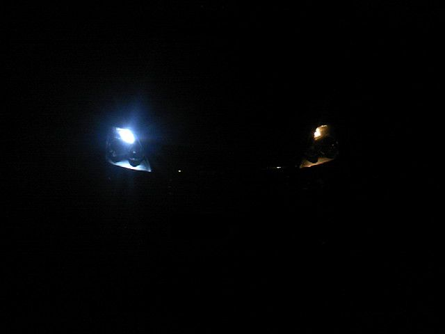 しまりす堂 ポジション新型36灯(T10)
