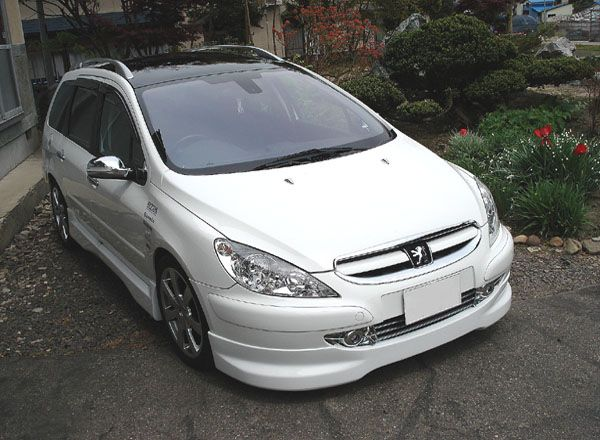 307SW (ワゴン)no brand Chrome Grill Coverの単体画像