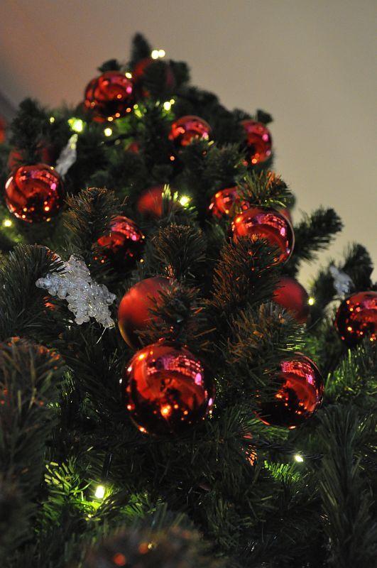 新宿テラスシティイルミネーション2008 クリスマスツリー
