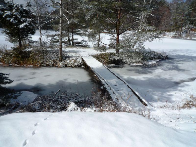 今年はやっぱり暖かい??<br /> <br /> 湖も未完全に凍ってます。