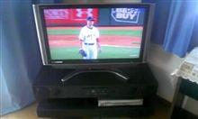 テレビ届きました!