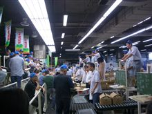 大阪市中央卸売市場見学