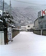 大雪だぁ!