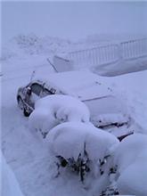 雪にうんざりだ~~~~ぁ