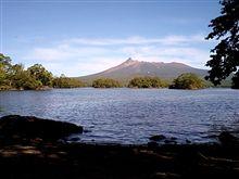 早秋 駒ケ岳と並木道。大自然を堪能する。