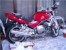 雪に埋もれた赤い跳ね馬を助けろ!!