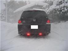 凄い吹雪です! (>_<)