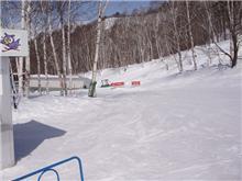 冬に水上スキー! 続く?