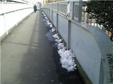一昨夜の雪