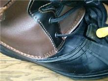 新しい足・・・・・vol1