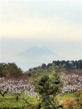 富士山を見ながら仕事