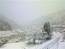初雪。。。