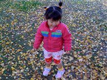 いちょうの葉っぱで遊びました