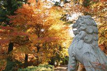 秋の丹波寺