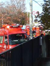 消防車来た-----っ!