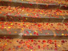 晩秋の紅葉巡り