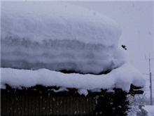 積雪104cm