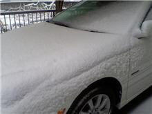 【遅いけど・・・】関東は大雪でした♪