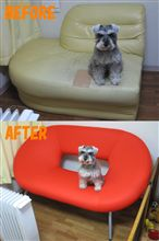 New Sofa ♪