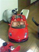 フェラーリF430・・来た~~!でか(^^;