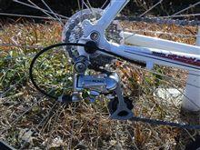 強風の中サイクリングに