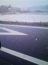 今日も雪やん(-_-#)