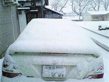 081231 朝の積雪量・・・