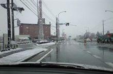 やっと初雪。