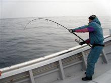 釣果報告 ②