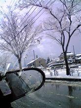 また×2 雪!