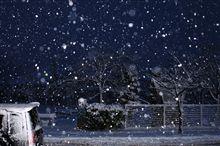 @雪が降る降る(@0@;)アリャリャ~と…アンチコ同調♪