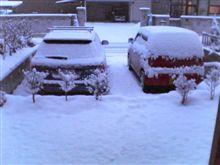 冬、再び・・・