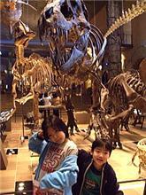 恐竜博2005に行って来ましたぁ!