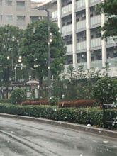 """""""都心に雪 奥多摩で通行止めも """"と、ニュースに!(^^;"""
