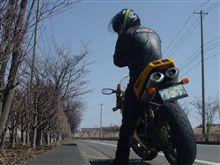バイクで脳トレ