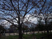 春はもうすぐ・・