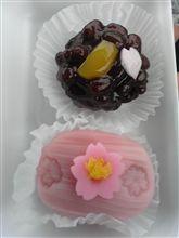 和菓子にも春が